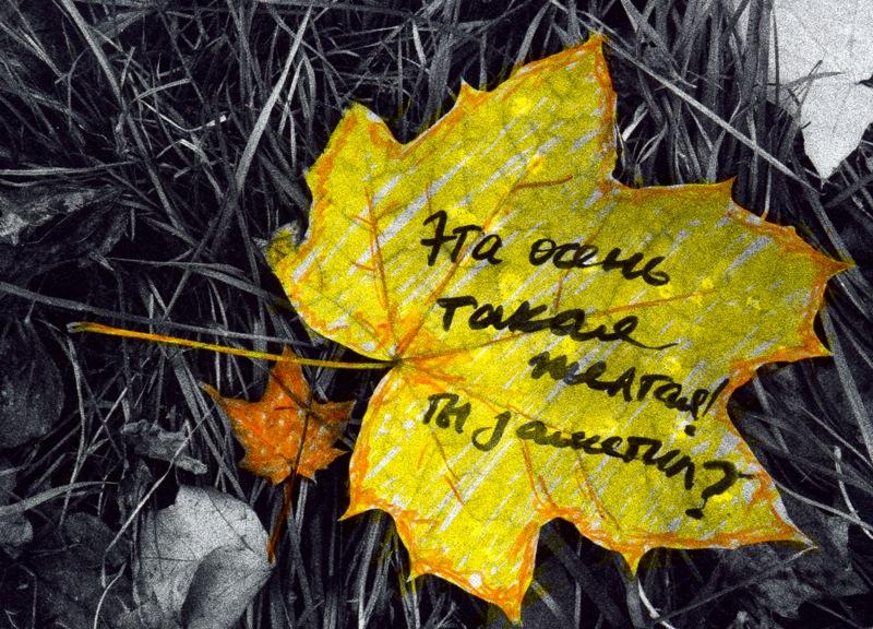 Картинки прикольные конец осени, пожеланием